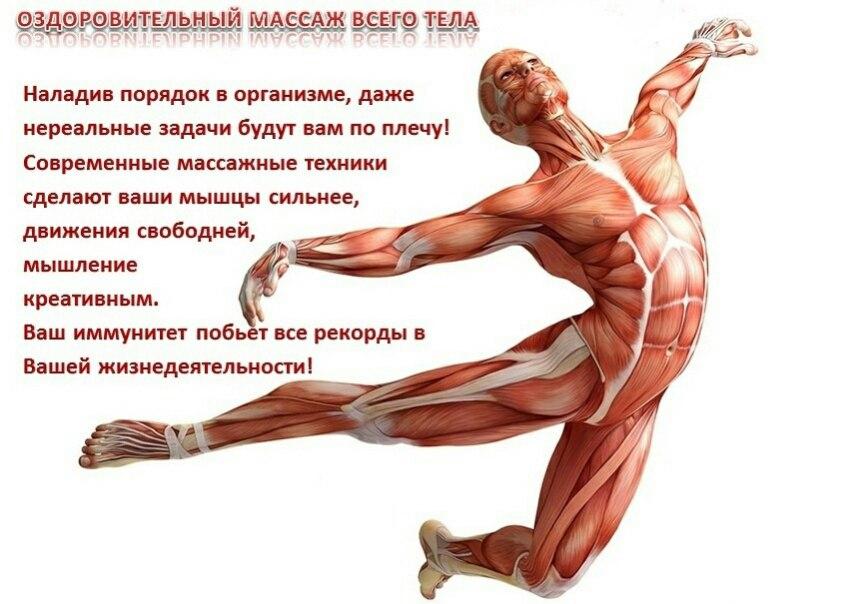 АБОНЕМЕНТ «Оздоровительная программа всего тела» 20 000 ₽ 17000 ₽